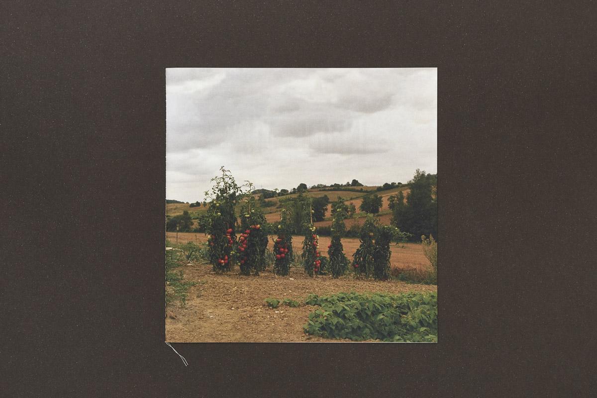 Julia-Rural-4